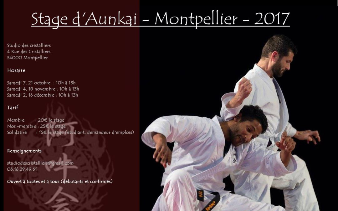 Workshop Aunkai Bujutsu à Montpellier avec Christophe Martin.