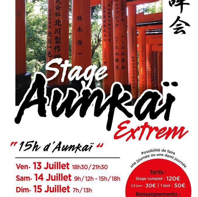 Stage «Aunkai Extrem» à Paris.
