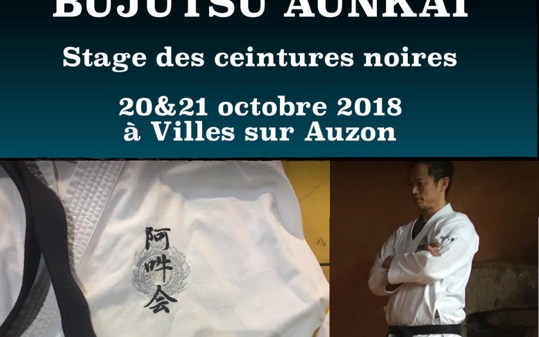 Aunkai – stages des ceintures noir – octobre 2018