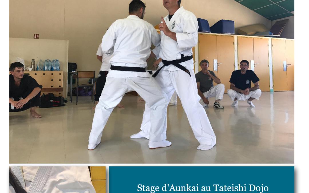 Aunkai – Stage au Tteishi Dojo – Villars 01330