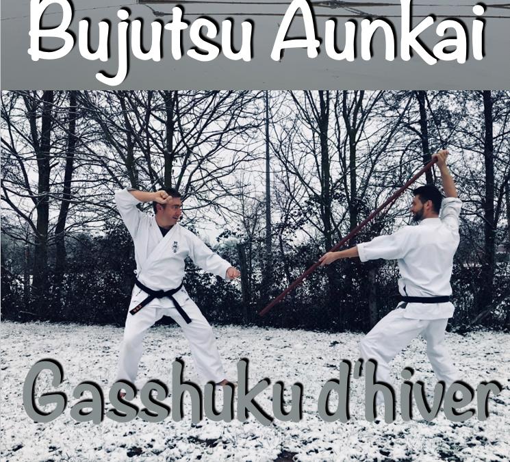 Aunkai Gasshuku d'hiver au Tateishi dojo.