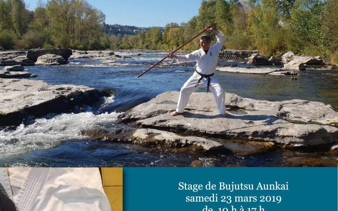Aunkai – Kiaz (kyoshi) au Tateishi Dojo à Villars (01)