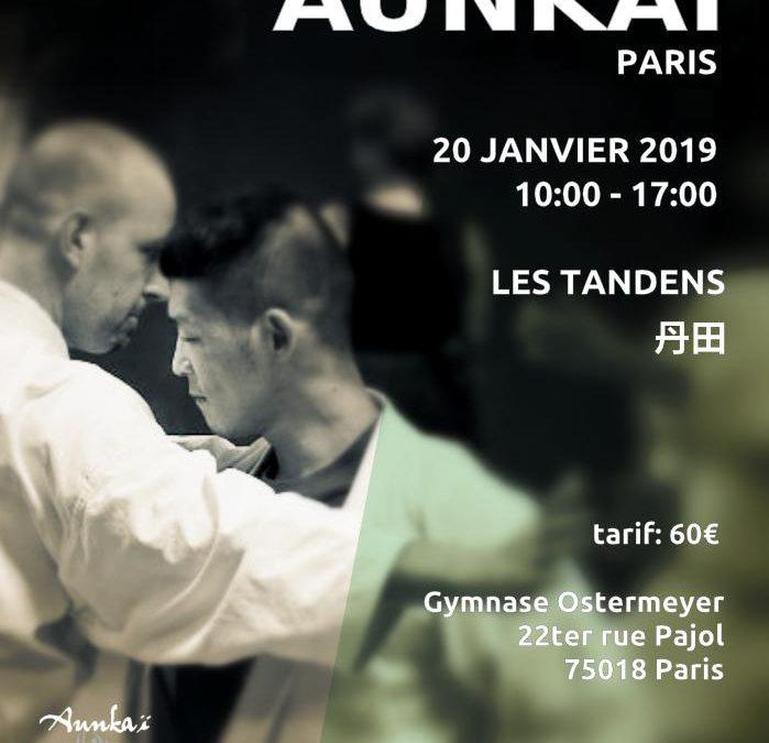 Aunkai – Manabu Watanabe (Hanshi) : Les tandens – principes régissant la structure interne du corps à Paris