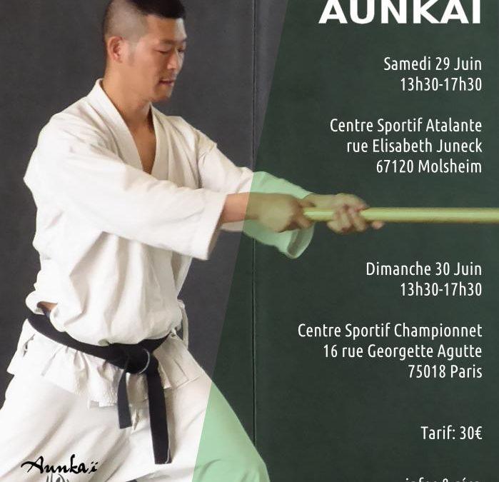 Aunkai & Shiatsu – Paris – Manabu Watanabe (Hanshi)